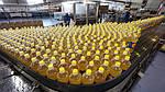 Экспорт зерновых и масличных культур спасет гривну