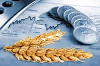 Мировые цены на зерновые не будут расти