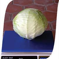 Семена капусты белокачанной Фундакси F1 (Fundaxy). Упаковка 2500 семян.