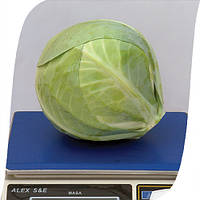 Семена капусты Фуриос F1 (Furios). Упаковка 2500 семян