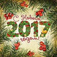 Поздравление с наступающим Новым Годом и график работы