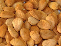 Ядра косточек абрикоса 150 гр
