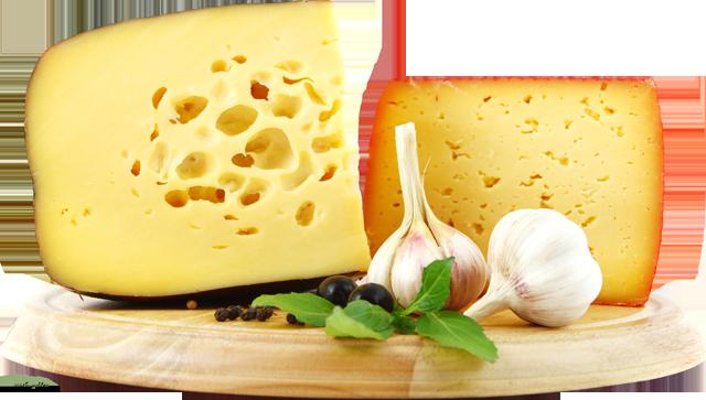 Закваски для твердых сыров