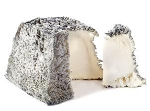 Закваски для сыров с плесенью