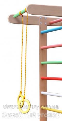 Гимнастические кольца для шведской стенки, фото 2