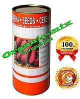 Семена свеклы Цилиндра, инкрустированные, 250 г  банка