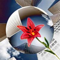 Информационные технологии проектирования и дизайна
