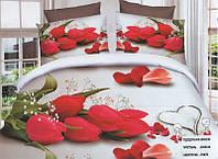 Комплект постельного белья (евро-размер) № 756 код: 756