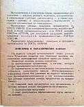 Инструкция по расшифровке условных обозначений на металлических и стеклянных банках, алюминиевых тубах, фото 3