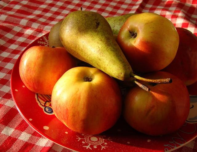 Украина будет экспортировать во Вьетнам и Индию яблоки, груши и голубику