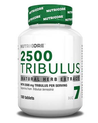 2500 Tribulus Nutricore (Biotech) 100 tabs , фото 2