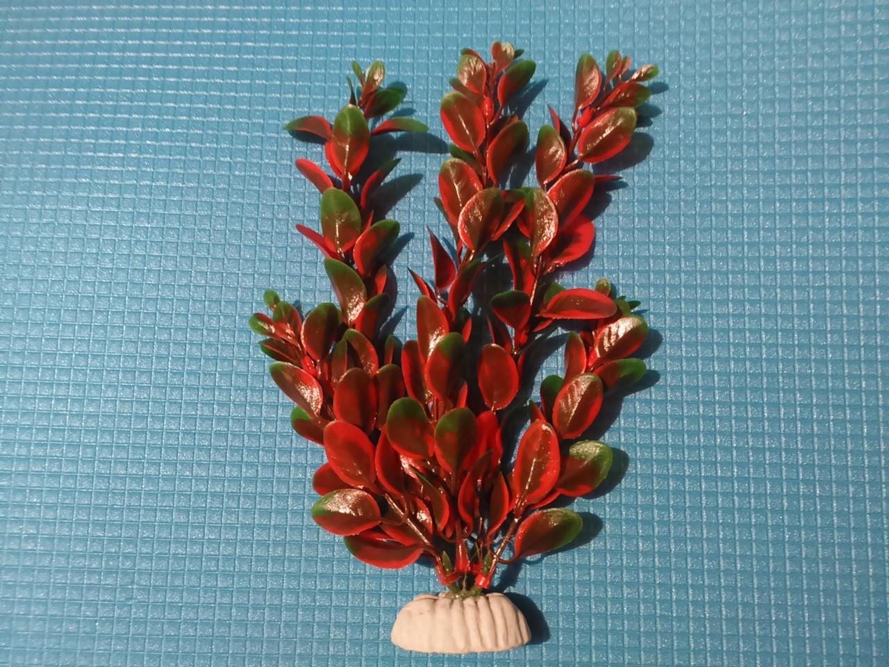 """Растение серии """"AP"""" 022А - 20см"""