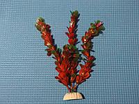 """Растение серии """"Sunny"""" AP- 043А, 20см"""