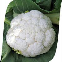 Семена капусты цветной Фронтина F1 (Frontina F1). Упаковка 1000 семян