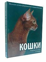 Пелікан Подарок Кошки Породы и уход за ними
