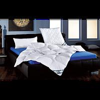 Антиаллергенное одеяло из полиэстера F.A.N. Kansas 155х220