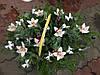 Новогодняя корзина с живыми цветами