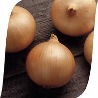 Семена лука Кэнди F1 (Candy F1). Упаковка 250 000 семян