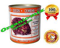 Семена салата Лолло Россо, банка 200 г , инкрустированные, ТМ Vitas