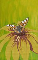 Схема для вышивки бисером размер А3 Бабочка на цветке