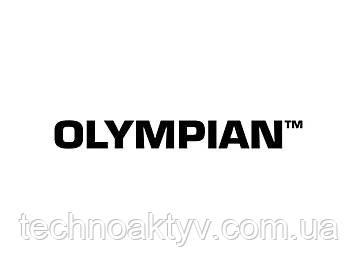 Являясь основным или резервным источником энергии, дизельные генераторные установки Olympian производят надежную, чистую, экономичную электроэнергию даже в самых сложных условиях. Кроме того, генераторные установки Olympian выпускаются в разных конфигурациях с возможностью использования дополнительного оборудования.