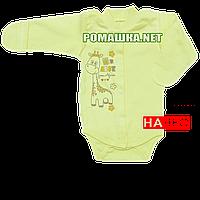 Детский боди с длинным закрытым рукавом р. 56 с начесом ткань ФУТЕР (байка) 100% хлопок ТМ Алекс 3188 Зеленый2
