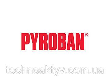Pyroban предоставляет специальные компоненты, комплекты для газовых или дизельных двигателей, спрос на которые существует в нефтегазовой отрасли, промышленности, горнодобывающей и других отраслях, где встречаются опасные зоны. Они прекрасно дополняют предлагаемые Caterpillar продукты, которые часто комплектуются изделиями и решениями Pyroban для обеспечения взрывозащиты двигателей Cat при их использовании в опасных условиях.