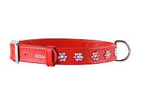 CoLLar  Гламур - кожаный ошейник для собак  (длина 21-29 см, диаметр - 12 мм) (3269)