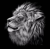 Алмазная мозаика Могучий лев 40 х 40 см (арт. FS407) , фото 1