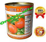 Семена, томат Волгоградский 5/95 инкрустированные 200 г банка, фото 2