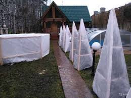 Агроволокно  белое Premium-Agro 40 г/м² (1.6*100 м) Защита от морозов, фото 1