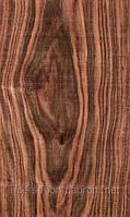 Шпон Королівське Дерево