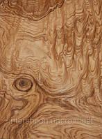 Шпон Ясень Корень (Оливковый)