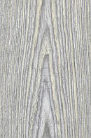 Шпон файн-лайн Табу Ясень светло серый фактурный тангент