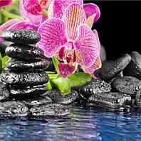 Алмазная вышивка Розовая орхидея KLN 35 х 35 см (арт. FS351)