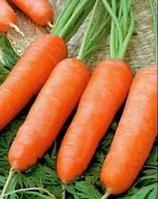 Семена моркови Карини 50 гр.