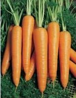 Семена моркови Вита Лонга 50 гр.