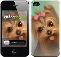 """Чехол на iPhone 4 Нарисованный йоркширский терьер """"928c-15"""""""