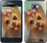 "Чехол на Samsung Galaxy S2 i9100 Нарисованный йоркширский терьер ""928c-14"""
