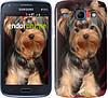 """Чехол на Samsung Galaxy Core Plus G3500 Йоркширский терьер """"929u-359"""""""
