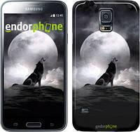 "Чехол на Samsung Galaxy S5 g900h Воющий волк ""934c-24"""