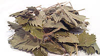 Земляника лесная листья 100 грамм