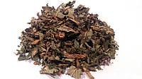 Репешок обыкновенный трава 100 грамм (репешок аптечный)