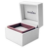 Коробочка PANDORA для шармов и бусин