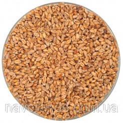 Солод пивоваренный пшеничный темный Weyermann Wheat Dark 25кг
