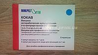 Вакцина антирабическая культуральная концентрированная очищенная инактивированная сухая (КОКАВ), 1доза