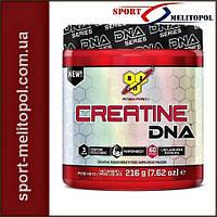 BSN Creatine DNA 309 g
