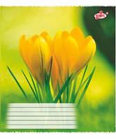 """Тетрадь 18 листов в линию """"Brisk Загадкові квіти"""""""