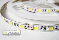 Светодиодная лента multi white Премиум (Epistar) 60 LED 28W/m IP20 (яркость 18Lm на один цвет), фото 1