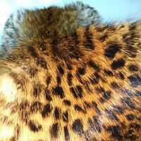 """Шкуры лисы камчатской тонированные под """"рысь"""" , натуральный мех."""